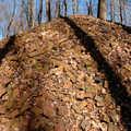 A hill of bricks at Lincoln Brick County Park.