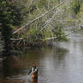 A fly fisherman on the South Branch of the Au Sable River.