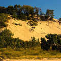 The towering dunes at Warren Dunes State Park.