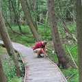 Hiker pauses on the boardwalk in Swanson Preserve.