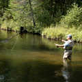 Fly fisherman on the Sturgeon River.