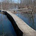Boardwalks at Keehne Environmental Area.