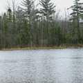 A pair of mallards on Chamberlain Lake.