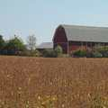 Barn and farm fields at Brauer Preserve
