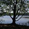 Hall Lake in Yankee Springs Recreation Area.