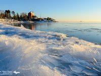 Photo credit: Michigan Nature Photos - Greg Kretovic