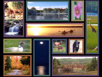 Baraga County Collage