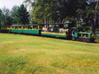 Toonerville Trolley Longest 24 inch track in USA
