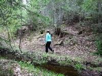 hike along streams