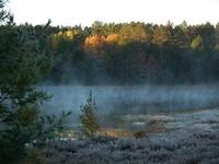 Frosty Fall Morning!