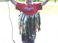 Luke's catch of walleye!