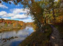 Hike or Fish - whatever your pleasure along the Manistee