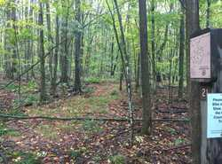 Mackenzie Trail marker #21 - looking north
