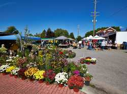 Downtown Farmers Market - T,Th,Fr,Sa, by start of all Routes