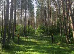 Mackenzie Trail head (gated to prevent ORV use)
