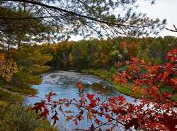 Fall Color along the Scenic Manistee River Trail (Rte 2)