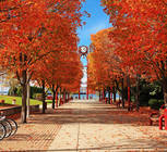 Enjoy a casual stroll while taking in the breathtaking fall color.