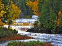 Lower Tahquamenon Falls are a series of five smaller cascades that encircle a quaint island reachable by rowboat.