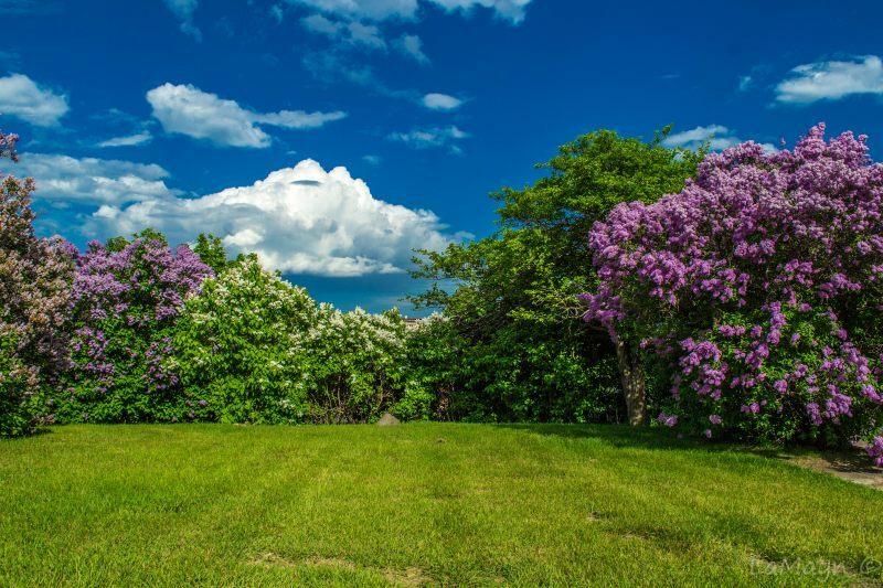 Spring Activities In The Upper Peninsula Of Michigan Up