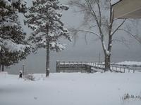 What a winter wonderland