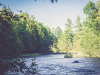Located 65 Wooded Acres on the Beautiful Black River!