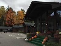 Fall at the Cedar