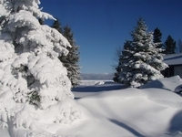 Porcupine Mountains in the Winter, Photo by Rick Varecha